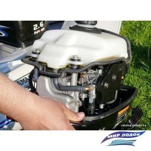 Лодочный мотор Parsun F2.6 BMS
