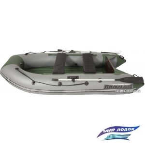 Моторно-гребная лодка Пилот М-300 НДНД