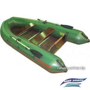 Моторно-гребная лодка Мнев и К CatFish 310 (зеленый)
